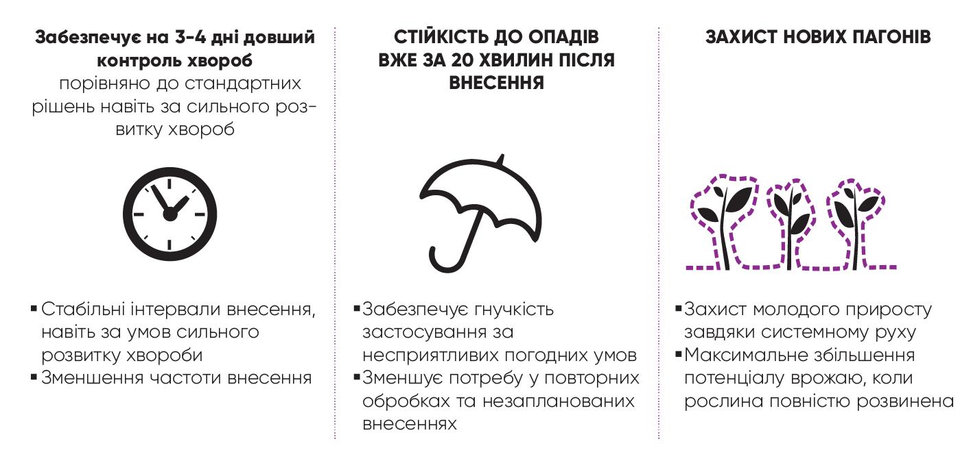 zorvek-01.png